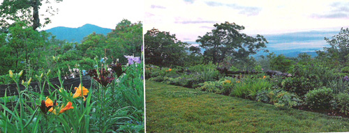 Garden, landscaping and North Carolina Mountain Views from Bear Wallow Springs